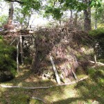 The heather layer - this was woven into the Rhododendron like thatching on a roof. Rain drips down to the floor this way.